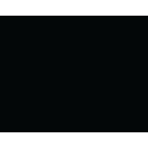 skinmuk-logo_final